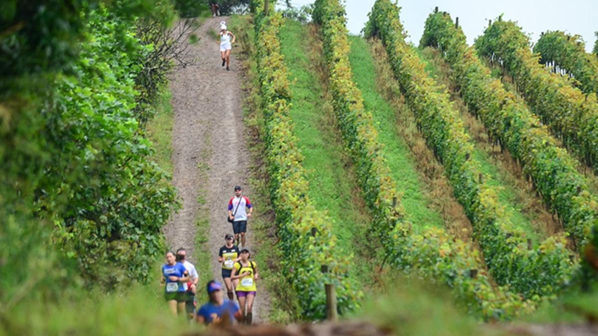 Maratona dos Vinhedos - 6ª Etapa Trilhas e Montanhas 2021